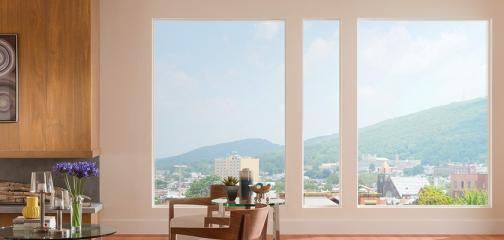 Style Line Series vinyl picture windows